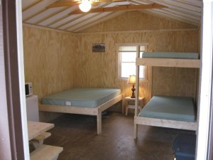 interior cabin photo showing beds