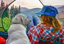 camping-with-dogs-3