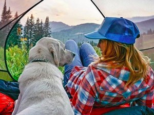 camping with dog photo